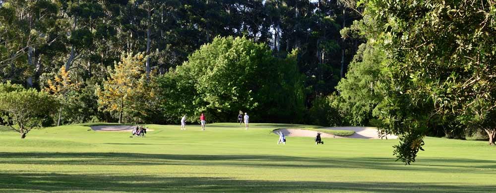 10th hole knysna golf club