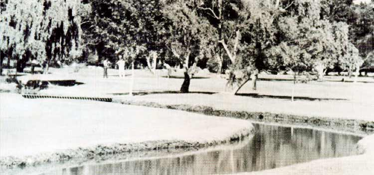 The now famous island 8th green was first built in the 1970s